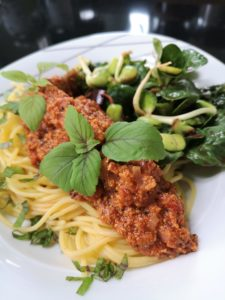 Read more about the article HEALTHHACK Bolognese